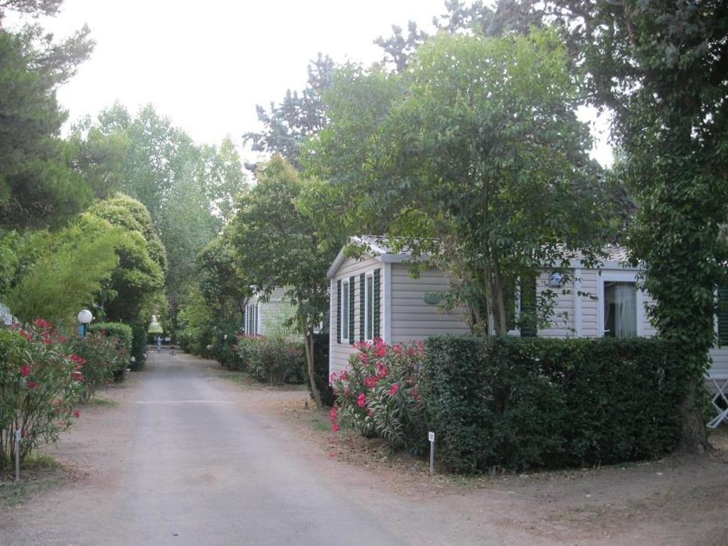 Camping Le Rebau Montblanc
