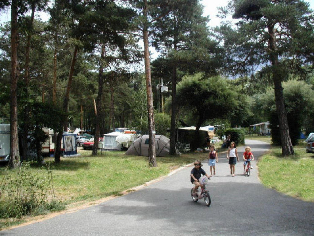 Camping Saint James les Pins à Guillestre
