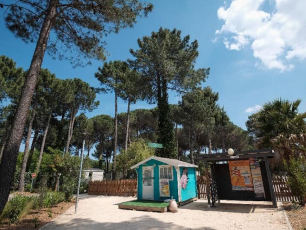 Camping Taxo les Pins