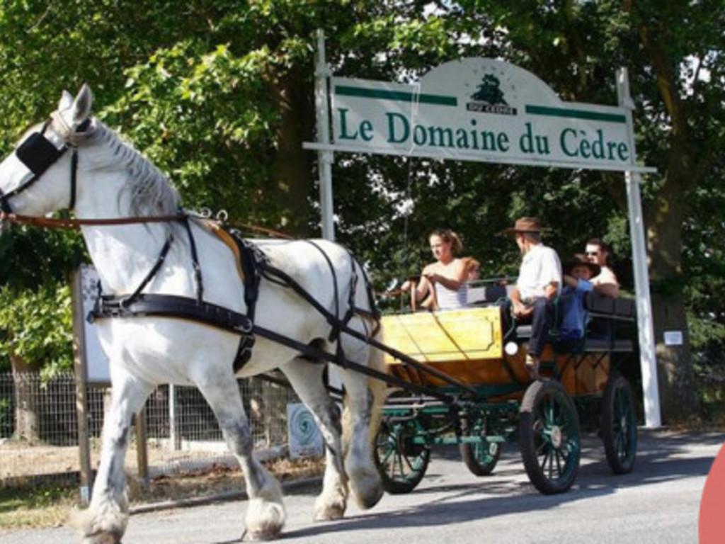 Parc Résidentiel de Loisirs Le Domaine du Cèdre